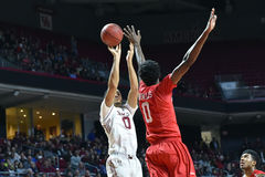 2016 basket-ball de NCAA - Houston au temple Images stock