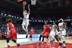 2016 basket-ball de NCAA - Houston au temple Photographie stock
