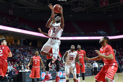 2016 basket-ball de NCAA - Houston au temple Photos libres de droits