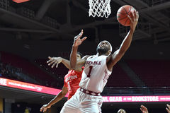 2016 basket-ball de NCAA - Houston au temple Images libres de droits