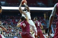 2015 basket-ball de NCAA - St Joe au temple Photos libres de droits