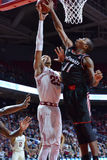 2015 basket-ball de NCAA - Temple-Cincinnati Image libre de droits