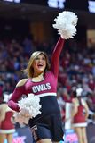2015 basket-ball de NCAA - Temple-ECU Photo stock