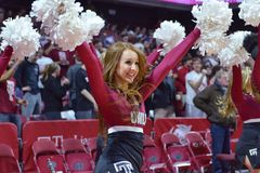 2015 basket-ball de NCAA - Temple-ECU Photographie stock