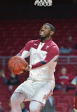 2015 basket-ball de NCAA - temple - UCF Photographie stock