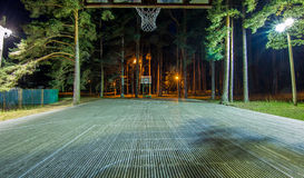 Basket-ball de nuit Image stock