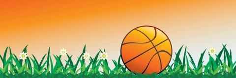 Basket-ball en fleurs Images libres de droits