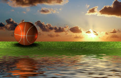 Basket ball on the green grass Stock Image