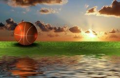 Basket Ball On The Green Grass