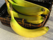 Basket of bananas 02 Royalty Free Stock Image