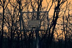 Basket for basketball on the background of sunset and trees Stock Photography