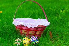 Basket with beautiful spring flowers Royalty Free Stock Photo