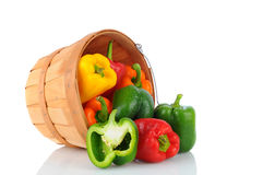 Basket of Bell Peppers Royalty Free Stock Image