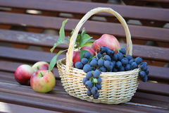 Basket on the bench Royalty Free Stock Images