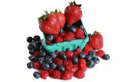 Basket of berries Stock Image