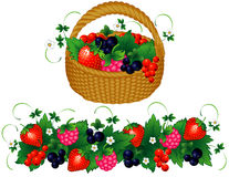Basket of berries. Raspberry, currant, strawberry, blueberry Stock Photos