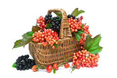 Basket with berries close up on white background Stock Photography