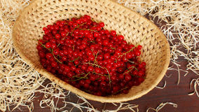 Basket with berries stock video