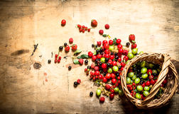 Basket with berries. On wooden table. Royalty Free Stock Photography