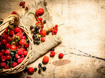 Basket with berries. On wooden table. Royalty Free Stock Images