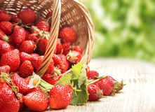 Basket with berry on table Stock Images