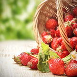 Basket with berry on table Royalty Free Stock Images