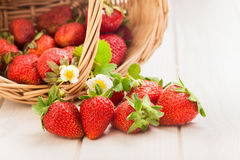Basket with berry on table Royalty Free Stock Photography