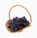 Basket Black Grapes Stock Photo