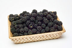 Basket of blackberries Stock Photo
