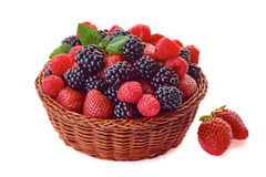 Basket with blackberries, strawberries and raspberries on white. Basket with blackberries, strawberries and raspberries  on white background Stock Images
