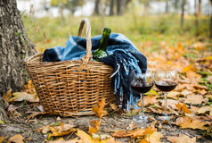 Basket with a blanket, wine and glasses. On yellow autumn leaves. A cozy autumn picnic in the park, a warm autumn day Royalty Free Stock Photography