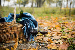 Basket with a blanket, wine and glasses. On yellow autumn leaves. A cozy autumn picnic in the park, a warm autumn day Stock Images