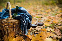 Basket with a blanket, wine and glasses. On yellow autumn leaves. A cozy autumn picnic in the park, a warm autumn day Royalty Free Stock Images