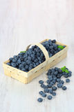 Basket with blueberries Royalty Free Stock Photos