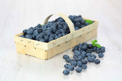 Basket with blueberries stock photos