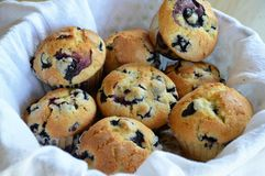 Basket of Blueberry muffins Royalty Free Stock Photo