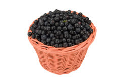 Basket with blueberry on a white Royalty Free Stock Photo