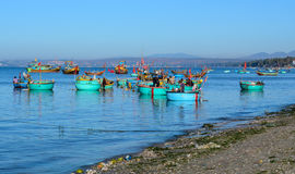 Basket boats on the sea in Cam Ranh bay, Vietnam Royalty Free Stock Images