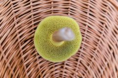Basket, Boletus, Detail Stock Photography