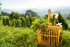 Basket with bottles and glass of white wine Stock Image