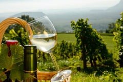 Basket with bottles and glass of wine Royalty Free Stock Photo