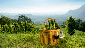 Basket with bottles of wine Royalty Free Stock Image