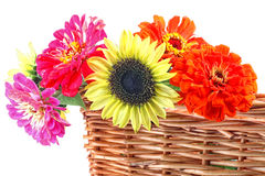 Basket Bouquet Stock Photography
