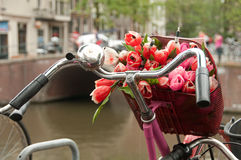 Basket with bouquet of red tulips on a bike stock image