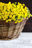 Basket with a bouquet of tansy flowers Royalty Free Stock Photo