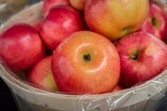 Basket Braeburn Apples. Basket of organic red braeburn apples at local farmers market stock image
