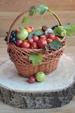 A basket braiding  with fruit and green-stuffs. A basket braiding  with fruit and green-stuffs, stands on a wooden stump Royalty Free Stock Photos