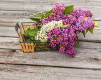 Basket with a branch of lilac Royalty Free Stock Image