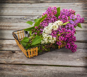 Basket with a branch of lilac Royalty Free Stock Photo