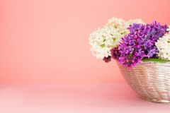 Basket with a branch of lilac flowers on a coral pink background. Copy space. Beautiful summer bouquet stock images